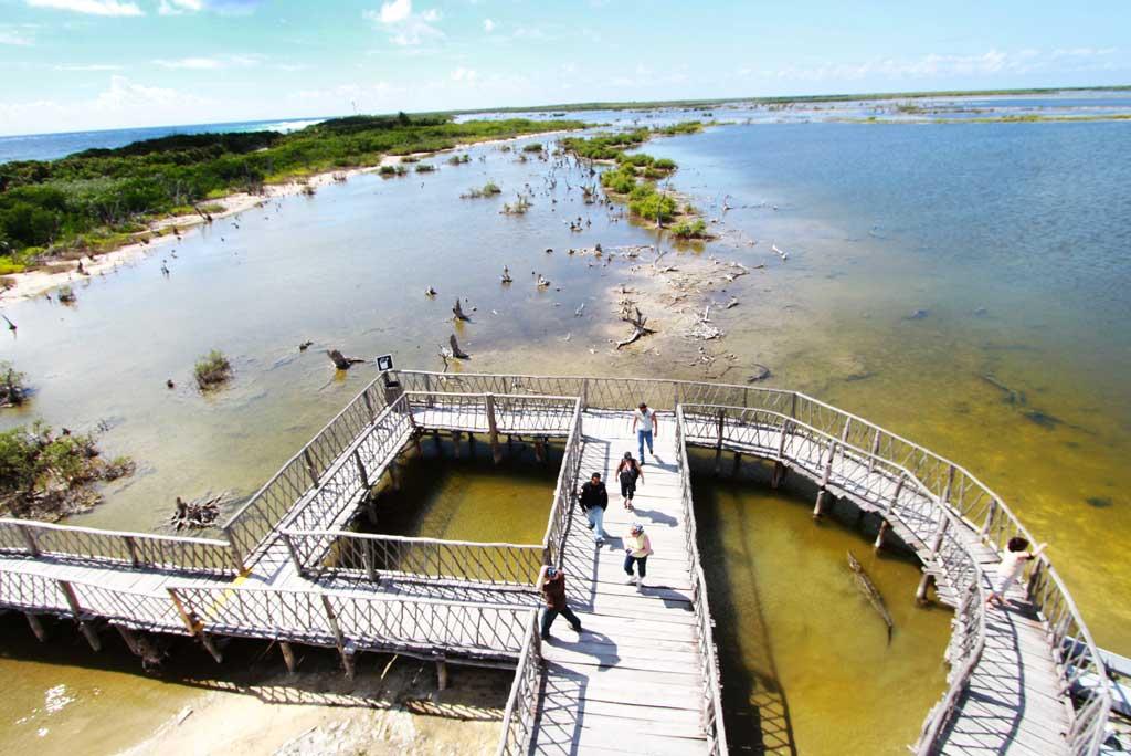 South Point Cozumel - Crocodiles Area